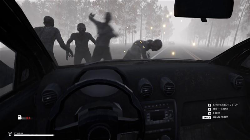 Mist Survival indir