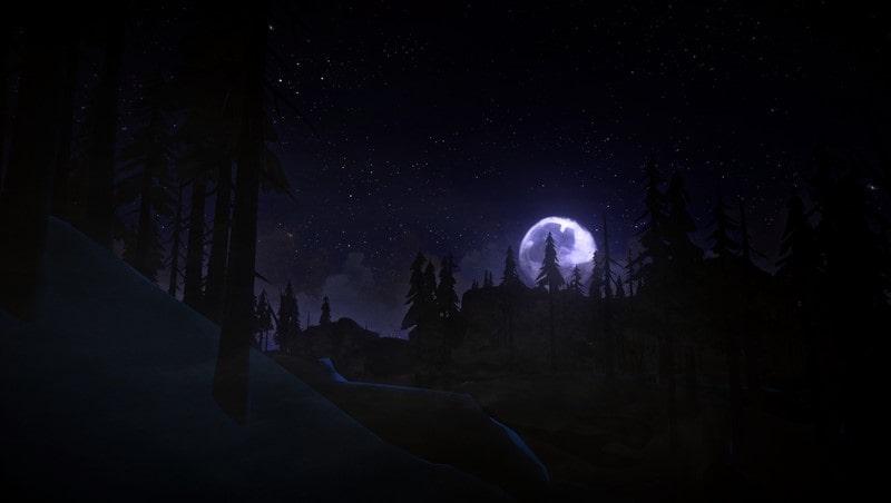The Long Dark indir