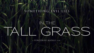 In the Tall Grass Türkçe Dublaj Full HD 1080P İndir