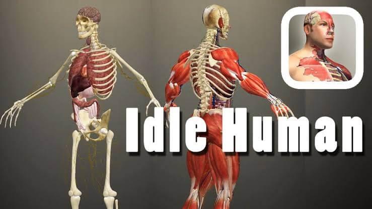 Idle Human Hileli Apk İndir