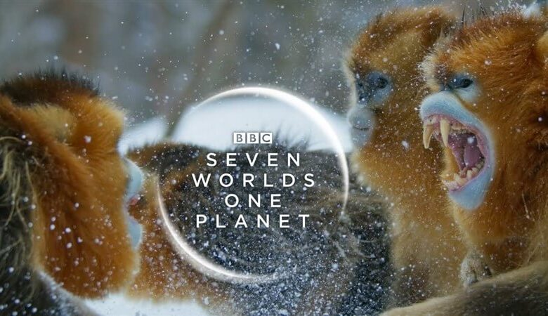 Photo of Seven Worlds, One Planet İndir – TR Dublaj – Tüm Bölümler
