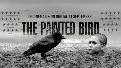 Boyalı Kuş İndir Türkçe Dublaj 1080P