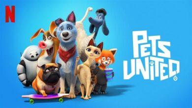 Evcil Hayvanlar Birliği İndir Türkçe Dublaj Full HD 1080P